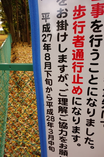 003_DSC02892.JPG