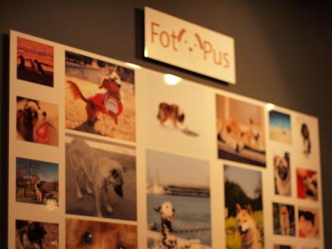 005_s_5509_EP1_fotopus写真展best30_20100717.JPG