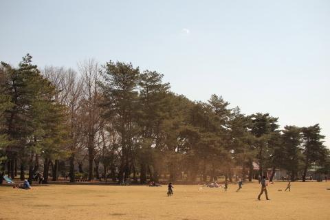 015_P3230527_e-p1_25mm_竜巻_野川公園_20140323.jpg