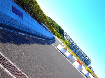 090920_P9200715_稲城_くじら橋.JPG