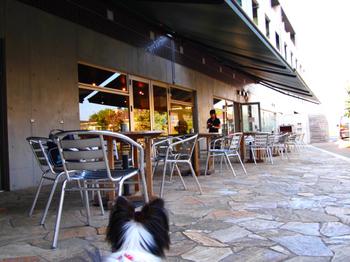 090926_P9260754_evoldogcafe_maria.JPG