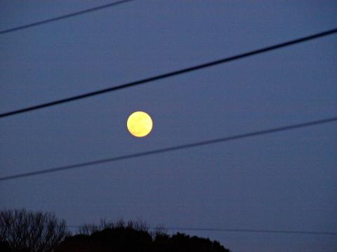 20100228_P2281035_E420_夕暮れの月_chofu.JPG
