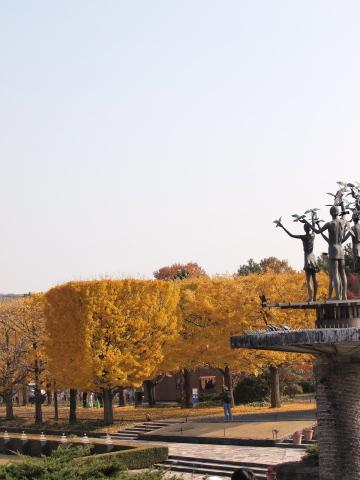 008_s_9281_ep1_50-200swd_黄葉_昭和記念公園_20111130.jpg
