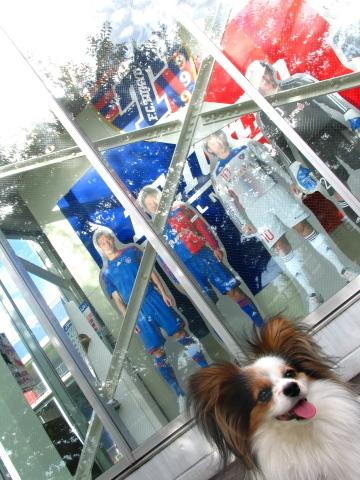 013_s_IMG_0739_サッカーグッズショップとデッキ上の犬マリア.JPG