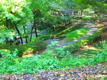 090920_P9200711_稲城中央公園.JPG