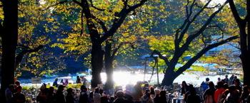 091103_PB031517_井の頭公園.JPG