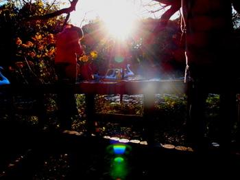 091103_PB031521_井の頭公園.JPG