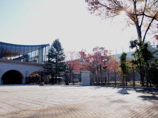 091123_PB231833_fuchu_東京競馬場.JPG