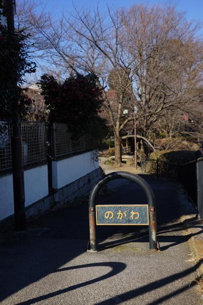 102_DSC06596.JPG