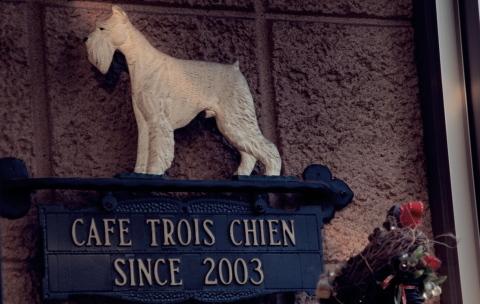 20100130_P1300582_torois chien.JPG