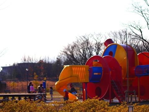 20100228_P2283603_EP1_公園_chofu.JPG