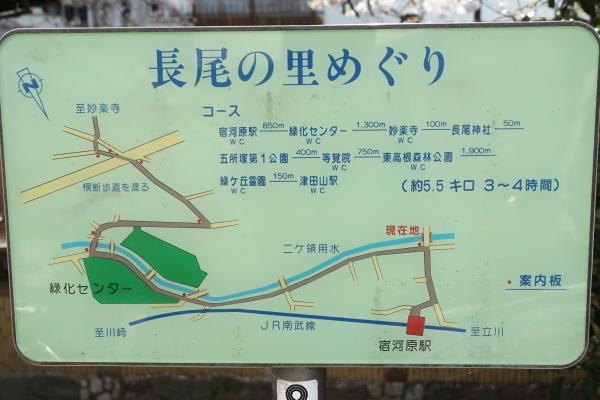 203_DSC07776.JPG